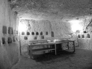 le château de Brézé : l'élevage du ver à soie