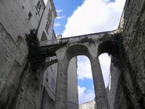 le château de Brézé : les douves
