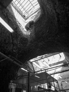 Caves Veuve Amiot
