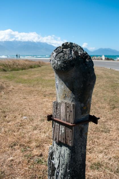 La boîte aux lettres historique de Kaikoura faite d'un os de baleine